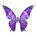 N Butterfly Fly 049 100x100y