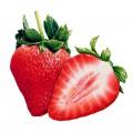 N Fruit22 200 200