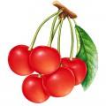 N Fruit30 180 200