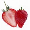 N Fruit31 150 150
