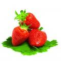 N Fruit 36 200x200 B