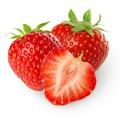 N Fruit 41 200x200 B