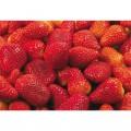 N Fruit02 350x250