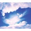 N Sky 116 425x300 B