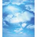 N Sky 119 575x505 B
