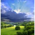 N Nature 285 250x260 B