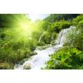 N Nature 490 390x260 B