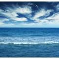N Sea 029 300x280 B